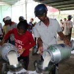 HTX bò sữa Evergrowth Sóc Trăng: 'Bà đỡ' của 10.000 nông dân
